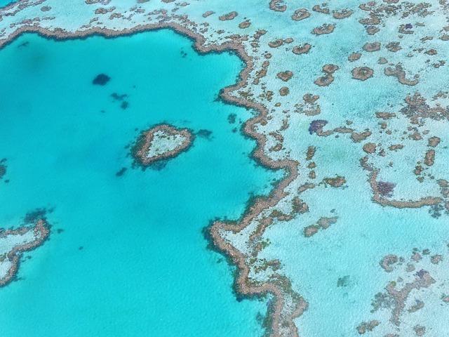 veliki-koralni-greben