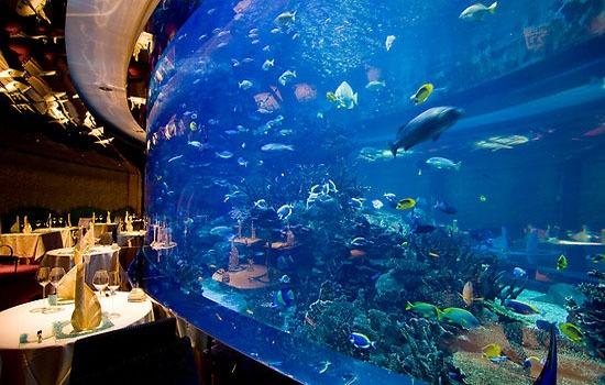 Burj-al-Arab-Dubai-Al-Mahara-Restaurant