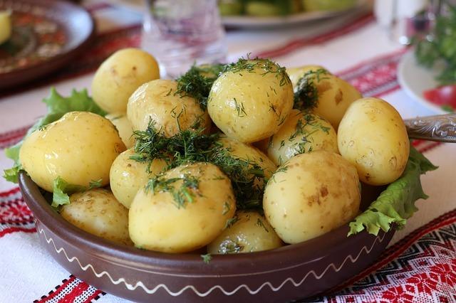 tradicionalna-jela-hrana