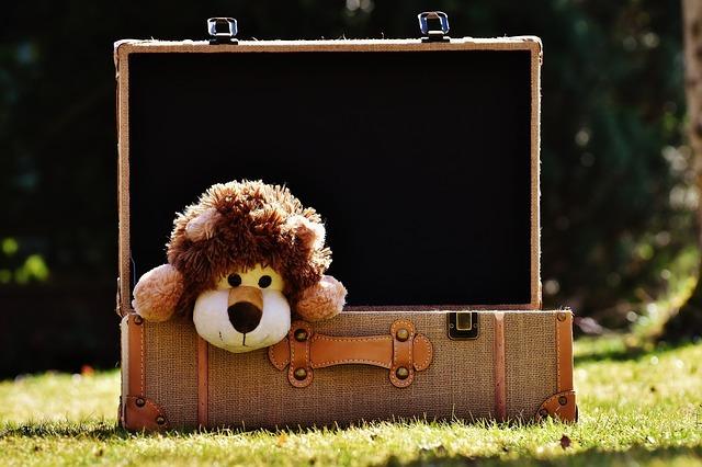 pakovanje-putovanja