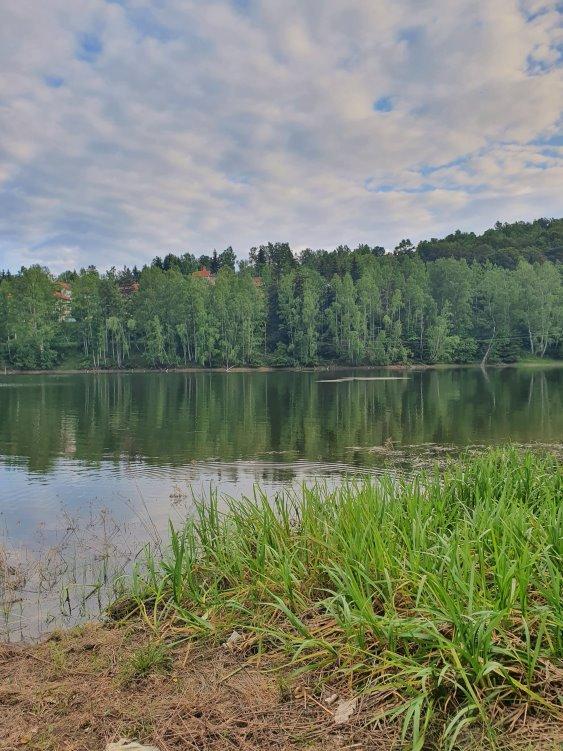 Vlasina, jezero