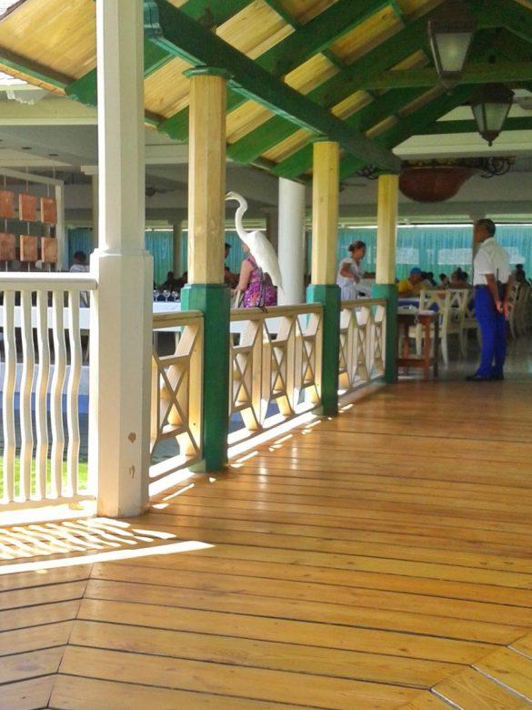 Hotelski restoran Iberostar