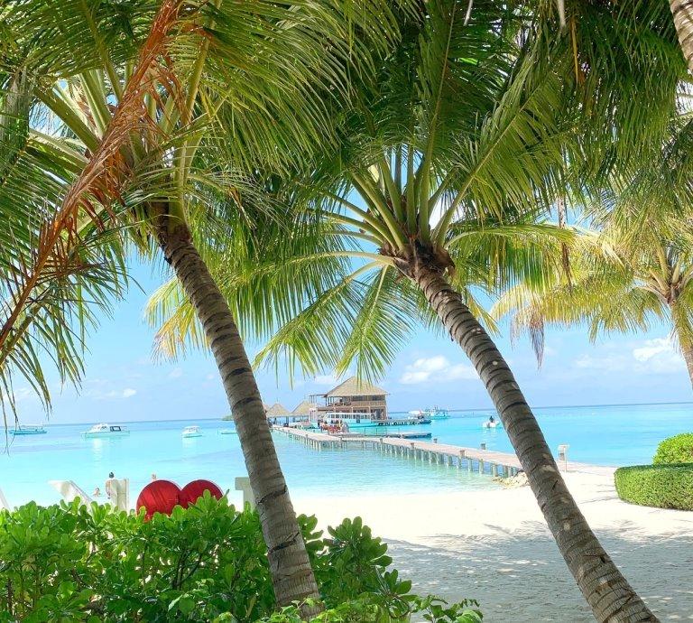 plaža maldivi
